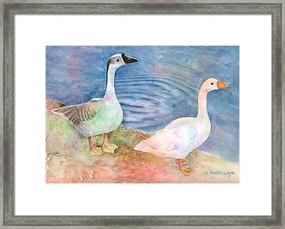 Out For A Stroll Framed Print by Arline Wagner