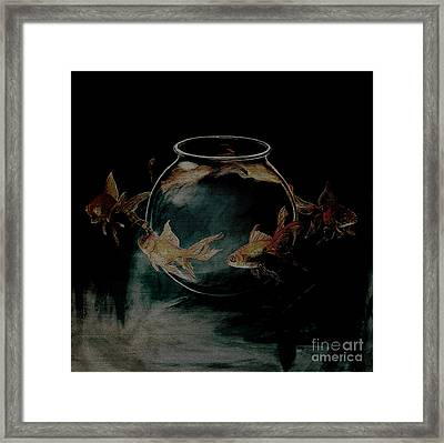 out from Jar  Framed Print