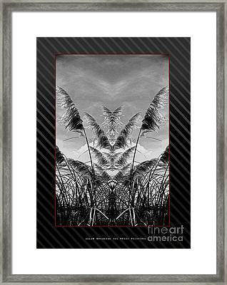 Out Here In The Feilds Framed Print by James  Dierker