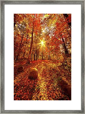 Out Here Framed Print by Phil Koch
