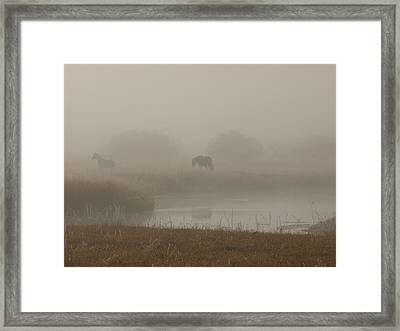 Out In The Fog Framed Print