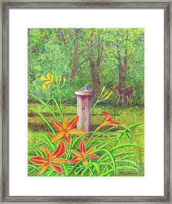 Out My Back Door Framed Print