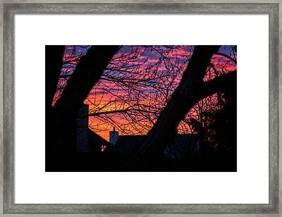 Out My Back Window Framed Print by CJ Schmit