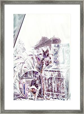 Out Of A Dream Framed Print