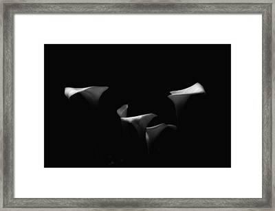Out Of Darkness Framed Print by Donna Blackhall
