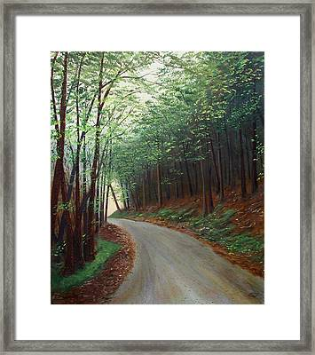 Out Of Darkness Framed Print by Sharon Steinhaus