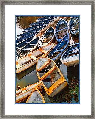 Out Of Season Framed Print by Robert Lacy