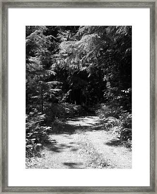 Out Of The Into The Dark Bw Framed Print by Ken Day