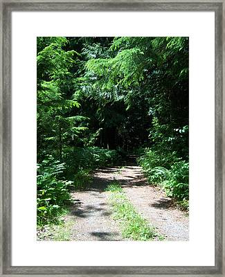 Out Of The Light Into The Dark Framed Print by Ken Day