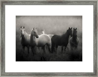 Out Of The Mist Framed Print by Ron  McGinnis
