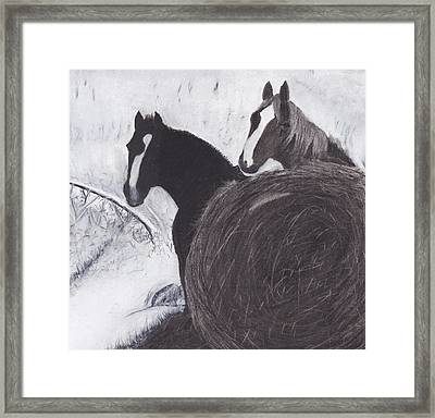 Out Of The Wind Framed Print