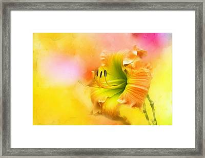 Out Of Yellow Framed Print