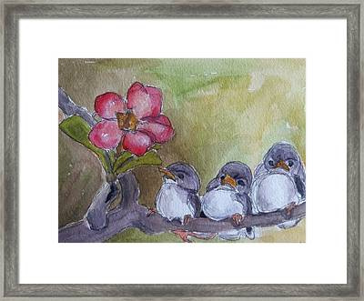 Out On A Limb Framed Print by Janet Butler