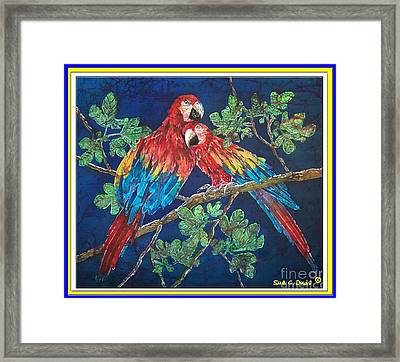 Out On A Limb- Macaws Parrots - Bordered Framed Print by Sue Duda