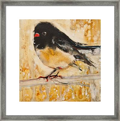 Out On A Limb With Orange Feet Framed Print by Jani Freimann