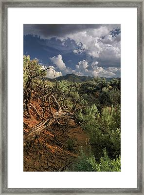 Out On The Mesa 2 Framed Print