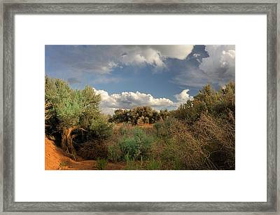 Out On The Mesa 4 Framed Print