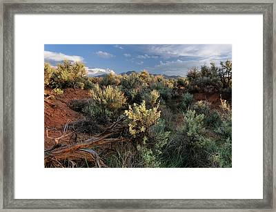 Out On The Mesa 7 Framed Print