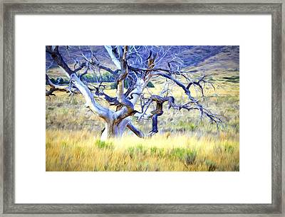 Framed Print featuring the digital art Out Standing In My Field by James Steele