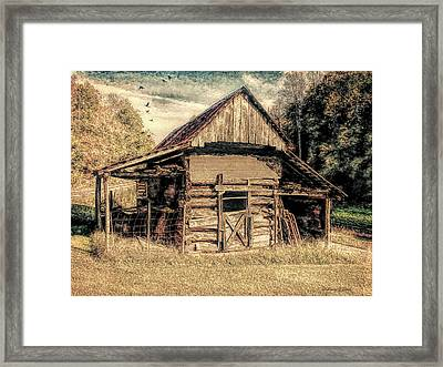 Out To Pasture 1 Framed Print