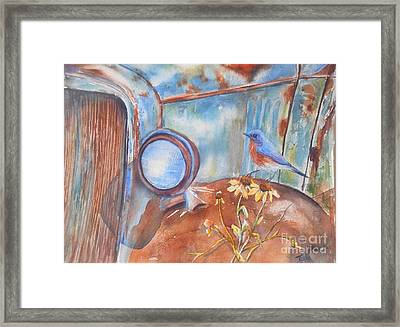 Out To Pasture Framed Print by Patricia Pushaw