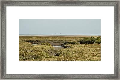 Out To Sea. Framed Print