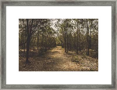 Outback Queensland Bush Walking Track Framed Print