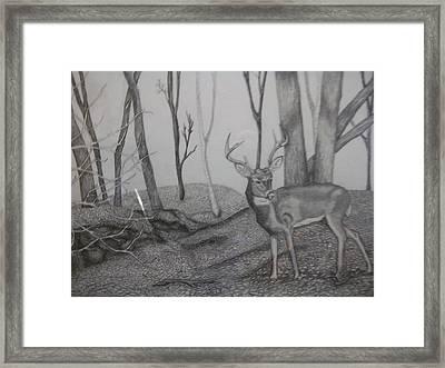 Outdoor Camera Framed Print by Kasandra Burns