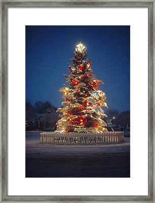 Outdoor Christmas Tree Framed Print by Utah Images