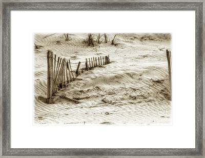 Outer Banks Beach Sand Fence  Framed Print by Randy Steele