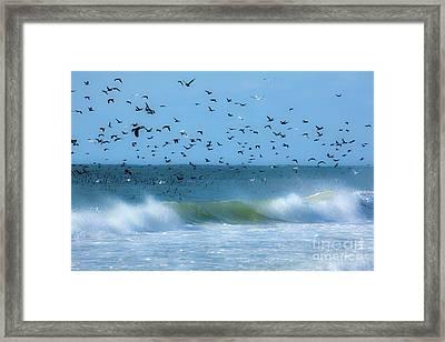 Outer Banks Birds Over Crashing Waves Framed Print
