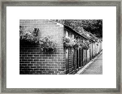 Outhouses All In A Row - Black And White Framed Print by Natalie Kinnear