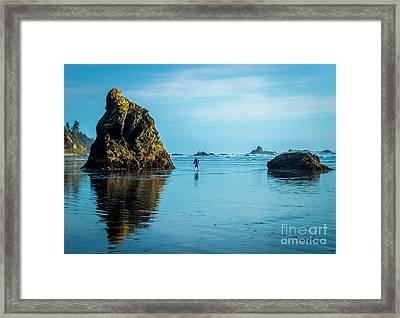Outing In Ruby Beach,wa Framed Print