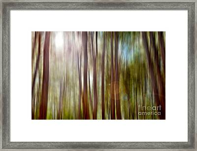 Outnumbered Framed Print by Az Jackson