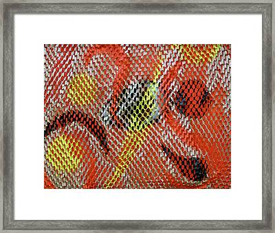 Outside Looking In Framed Print by Michele Myers