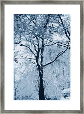 Outside My Window Framed Print by Linda Sannuti