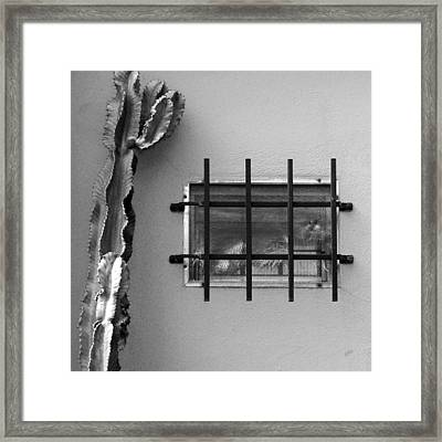 Outsiders - Cactus By The Window Framed Print by Ben and Raisa Gertsberg