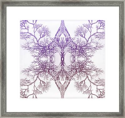 Outward Tree 9 Hybrid 4 Framed Print