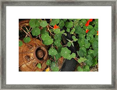 Over Grown Framed Print