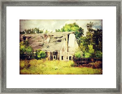 Over Grown Framed Print by Julie Hamilton