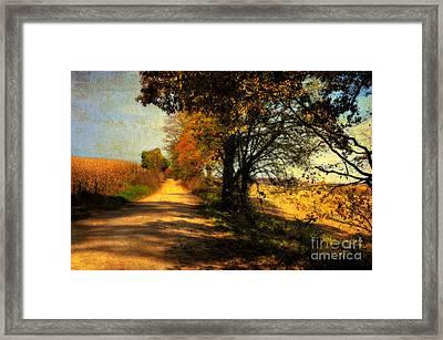 Over My Shoulder Framed Print by Lois Bryan