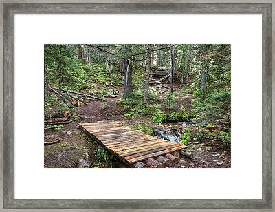Framed Print featuring the photograph Over The Bridge And Through The Woods by James BO Insogna