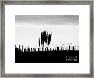 Over The Fence Framed Print by Karen Lewis