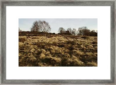 Over The Heath Framed Print