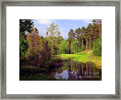Framed Print featuring the photograph Over The Pond by Scott Kemper