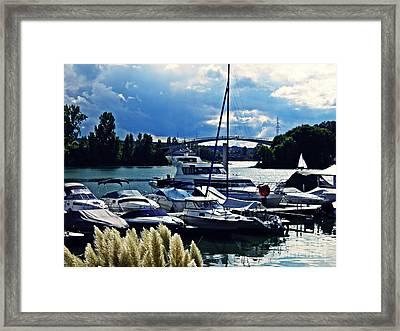 Overcast Day At The Marina  Framed Print