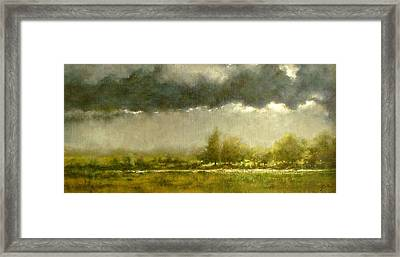 Overcast Day At The Refuge Framed Print