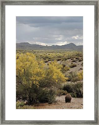 Overcast Desert Framed Print by Gordon Beck