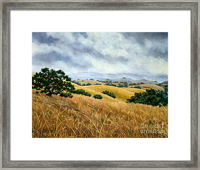 Overcast June Morning Framed Print by Laura Iverson