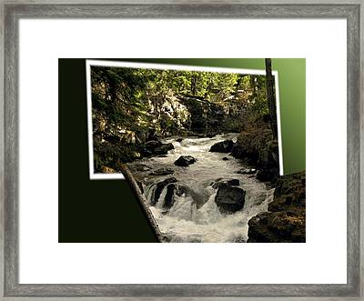 Overflowing Framed Print by Diane Schuster